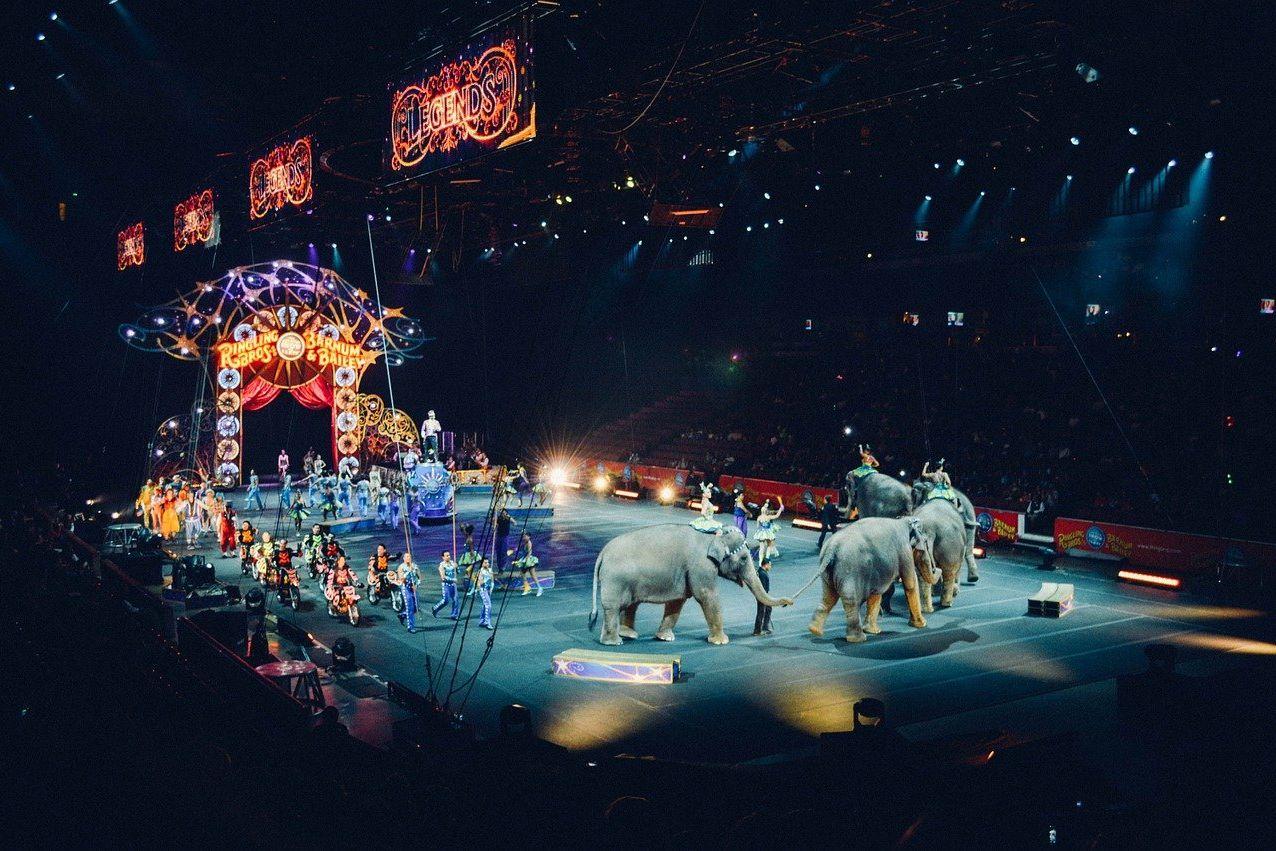 circus 828680 1280 uai - Art Homes Budapest